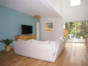 olivier olindo architecte architect architecture enghien les bains maison bois structure espace salon double hauteur canapé parquet mur couleur peinture luminaire